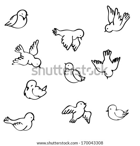 Birds in different positions