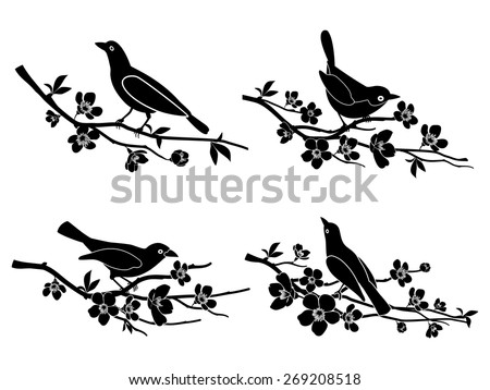 Birds on branches. Nature and animal, silhouette and flower and wildlife Vector illustration - stock vector