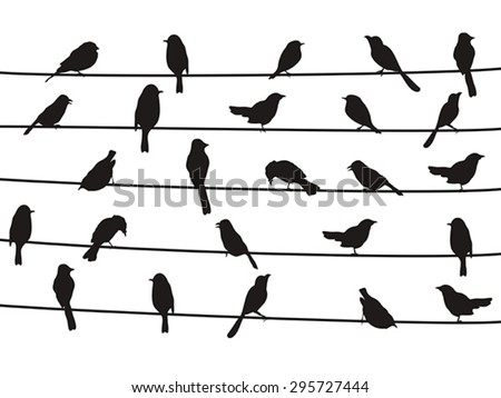 birds on wires - stock vector