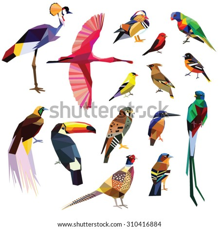 Birds-set colorful birds low poly design isolated on white background.Crowned crane,Kestrel,Finch,Kingfisher,Oriole,Waxwing,Bird of paradise,Duck,Pheasant,Quetzal,Lorikeet,Spoonbill,Tanager,Toucan. - stock vector
