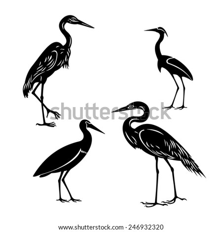 birds set isolated