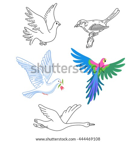 Birds set linear silhouette isolated on background, vector illustration - stock vector