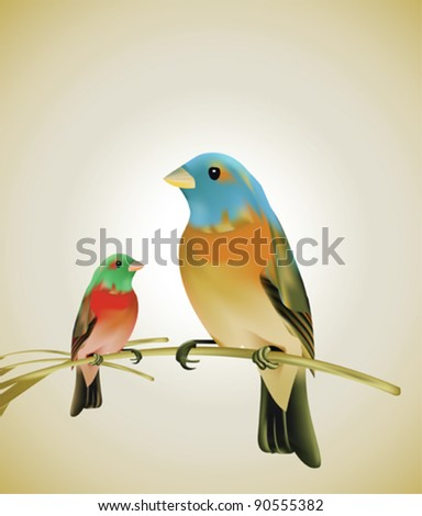 Birds sitting on a branch - stock vector