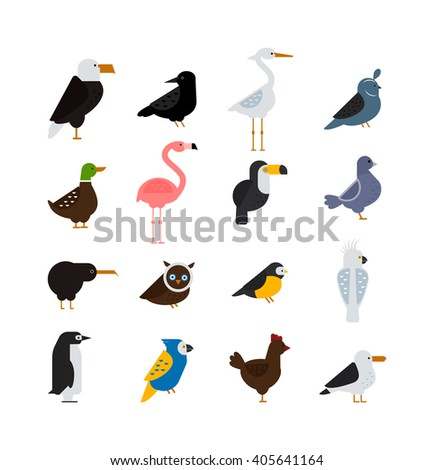 Birds vector set. Birds illustration. Eagle and parrot. Pigeon and toucan. Bird collection. Penguins, flamingos. Crows and peacocks. Black grouse chicken. Sofa and heron. Birds collection, vector bird - stock vector