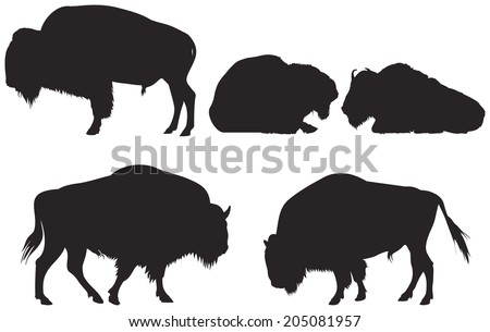 Buffalo Silhouette Stock Images, Royalty-Free Images & Vectors ...