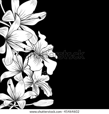 Black and white background with white flowers - stock vector