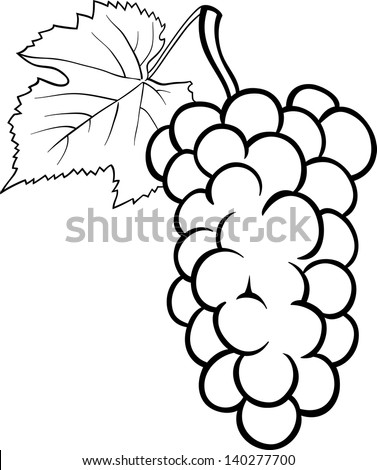 Bunch of grapes Stock Photos, Images, & Pictures ...