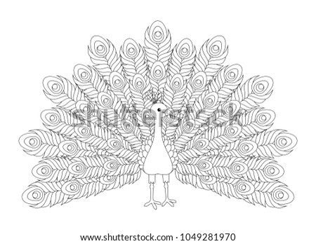 Black and white cute cartoon peacock coloring pages for the children vector illustration