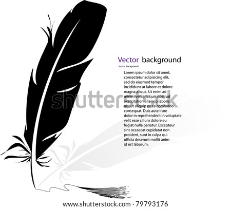black-and-white feather backgrounds - stock vector