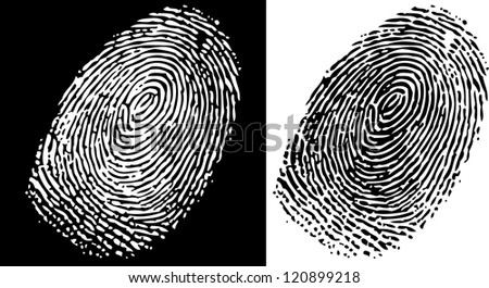 Black and white finger print background - stock vector