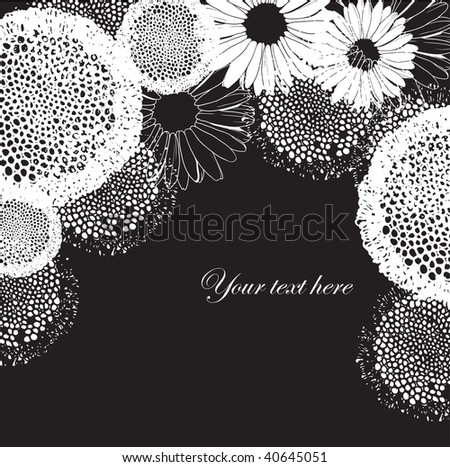 Black and white floral background - stock vector