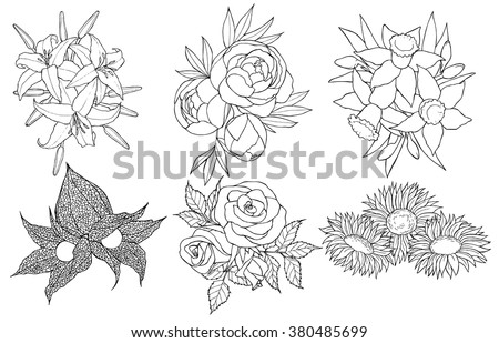 Black And White Hand Drawn Set Of Different Flowers Coloring Book Page For Adult