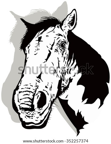 Black and white horse vector with shadow. - stock vector