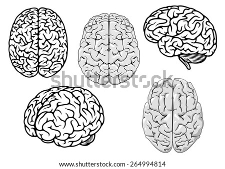 Black and white human brains showing different orientations for a medical, genetics, healthcare and science design concept