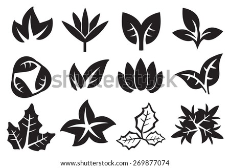 Black and white leaves in variety of designs. Vector icons isolated on white background. - stock vector