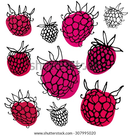 Black Raspberry Stock Images, Royalty-Free Images ...