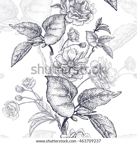 Black and white vector background with flower Chinese plum.