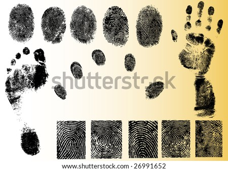 Black and White Vector Fingerprint and footprint elements - Very accurately scanned and traced ( Vectors are transparent so it can be overlaid on other images, vectors etc.) - stock vector