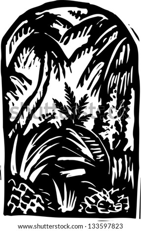 Black and white vector illustration of rain forest