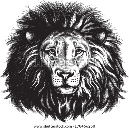 Black and white vector sketch of a majestic lion's face - stock vector