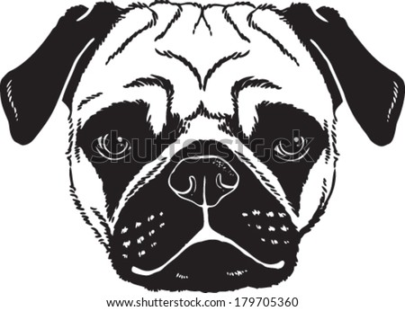 Black and white vector sketch of a Pug's face. - stock vector