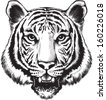 Black and white vector sketch of a tiger's face - stock vector