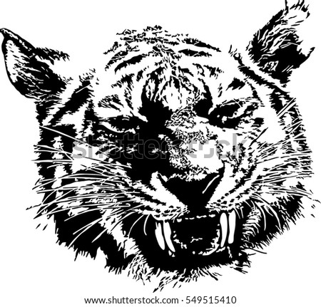 Black and white vector sketch of tiger's muzzle