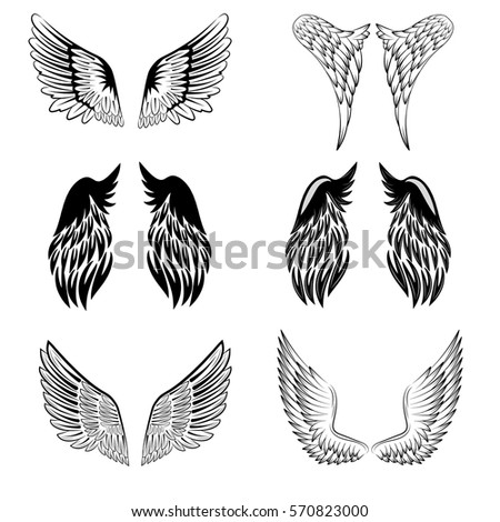 Black and white vector stylized heraldic bird wings, showing the two wings with feather detail