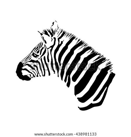black and white zebra head, isolated animal vector illustration