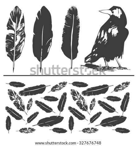 black bird and feathers - stock vector