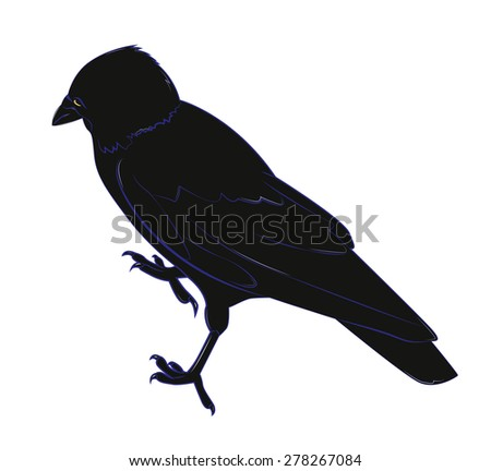 Black crow with yellow eye. Vector illustration