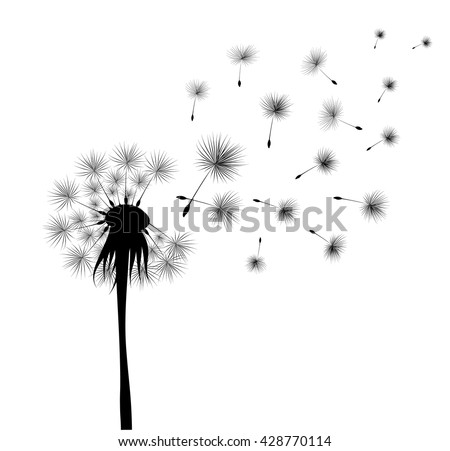 black dandelion on white background. Flying spores. Concept of wishing, tenderness and summer time. - stock vector