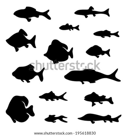 Black fish silhouettes isolated on white background. Various elements for your design.