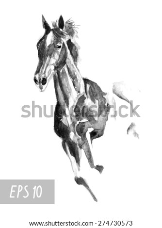 Stallion stock photos royalty free images vectors for Thoroughbred tattoo lookup