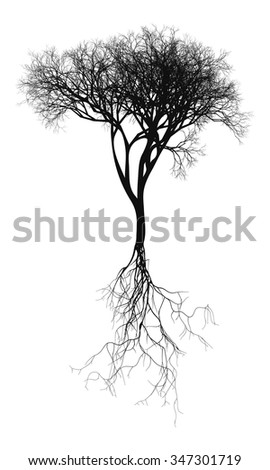 Black naturalistic bare tree with root system - vector illustration