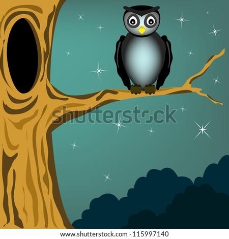 black owl in the dark night - stock vector