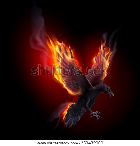 Black raven flying in the flame on the black background - stock vector