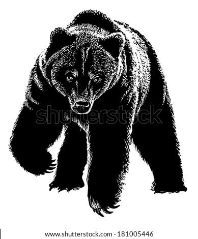 Black Scary Bear Stock Vector 181005446 - Shutterstock