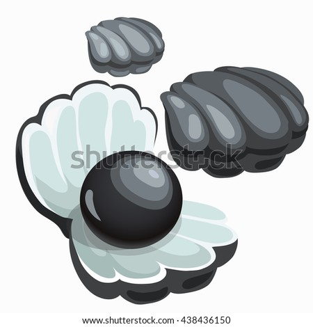 Black shell with pearl isolated on white background. Precious stones of natural origin. Vector illustration. - stock vector