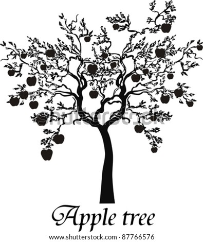Black silhouette apple tree isolated on White background. Vector Illustration - stock vector