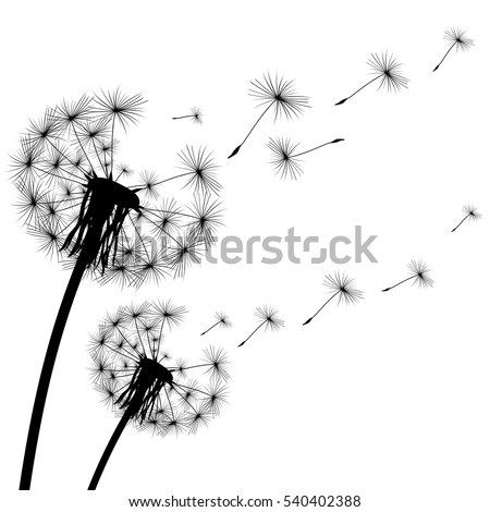 black silhouette of a dandelion on a white background.