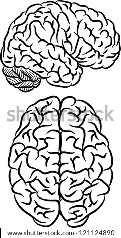 Black silhouette of human brain on white background - stock vector