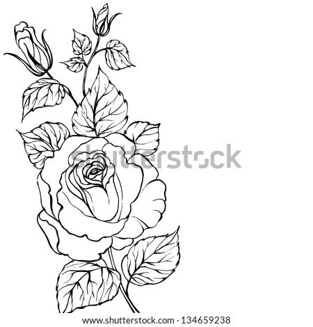 Black silhouette of rose isolated over white. Vector illustration. - stock vector
