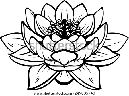 Black silhouette outline lotus (nelumbo), isolated on white. Vector tattoo illustration - stock vector