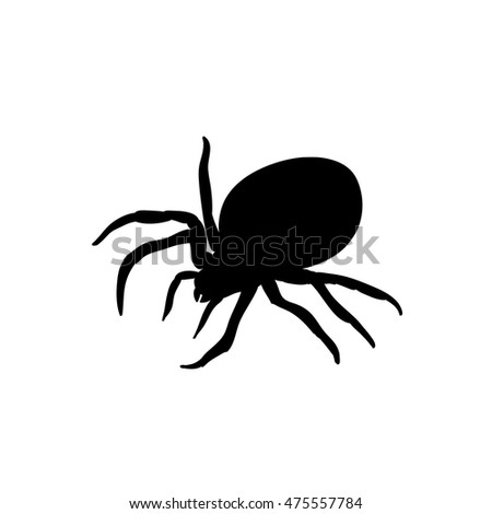 Black silhouette spider icon isolated on white background, side view. Vector spider isolated