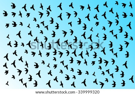 Black silhouettes of birds flying in the sky - stock vector