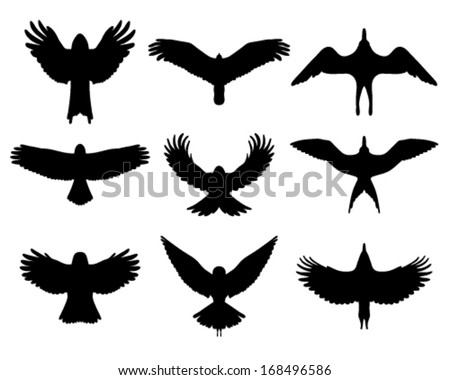 Black Silhouettes Birds Flight Vector Stock Vector ...