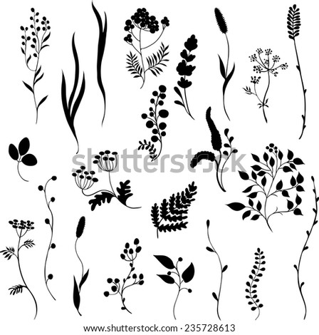 Black silhouettes of  grass on white background