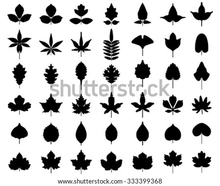 Black silhouettes of leaves of trees, vector - stock vector