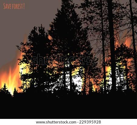 Bushfire Stock Photos, Illustrations, and Vector Art